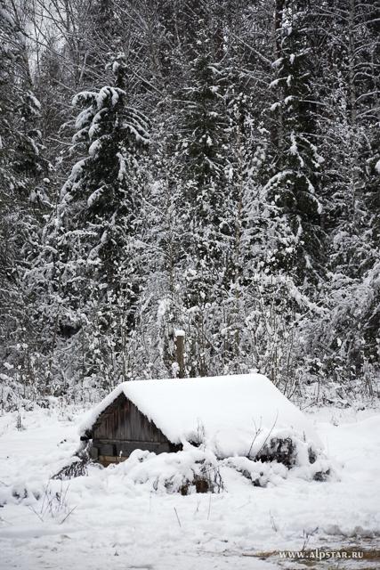 зима старый дом в лесу